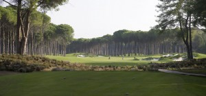 The pine landscape at Carya Golf Club set the scene for a wonderful golf adventure.