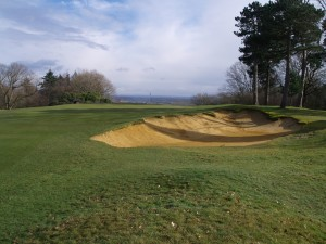 The skyline 12th green