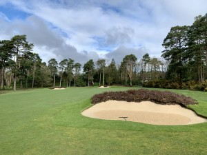 Hole 17 saw the large tree to right of green removed and planted with indigenous heathland landscape. The fairway bunkers were re shaped and topped with heather.