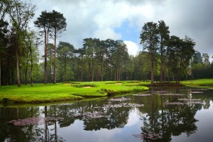 The new sixteenth hole created at the historic Woking Golf Club. Photo by Kevin Murray